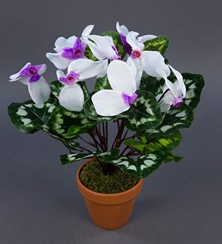 Seidenblumen Roß Alpenveilchen 36cm weiß-lila im Topf ZF künstliche Blumen Kunstpflanzen Kunstblumen Cyclamen