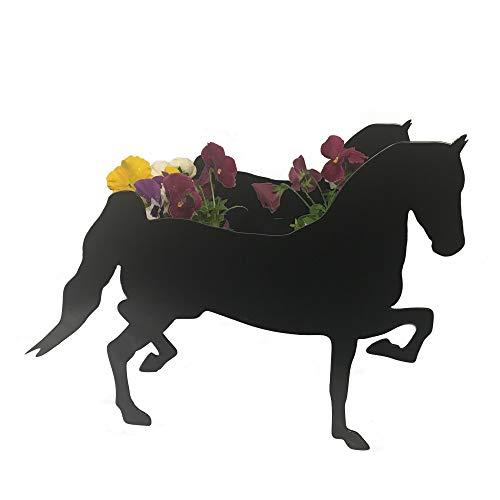 Staal Afbeeldingen Paard Hackney Paard Tuinplant