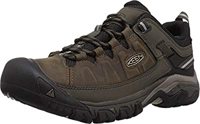 KEEN mens Targhee Iii Wp Hiking Shoe, Bungee Cord/Black, 10.5 US