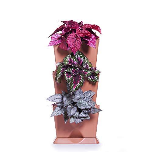 Minigarden One 1 Set per 3 Piante, Giardino Verticale Modulare e Espandibile, Posizionato sul Pavimento o Fissato al Muro, Sistema di Drenaggio Innovativo, Lungo Ciclo di Vita (Terracotta)
