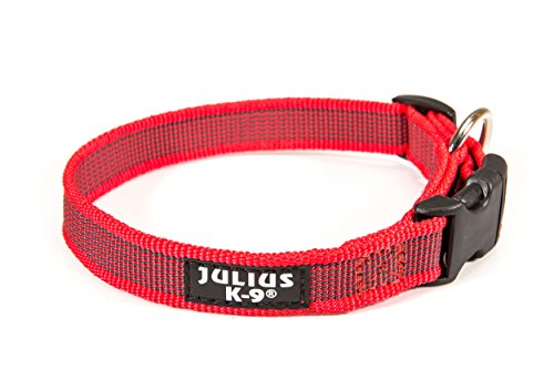 JULIUS-K9 220CG-R Color & Gray Halsband, 20mm*27-42 cm, verstellbar, rot-grau