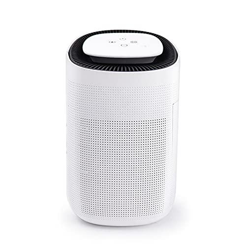Deumidificatore 2.5L Piccolo mini Sbrinamento automatico a risparmio energetico ultra-silenzioso è molto adatto per camera da letto, cucina e bagno
