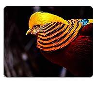 ゴールデンフェザント鳥エキゾチック野生動物自然ポートレートカスタマイズされた長方形おしゃれ防傷マウスパッド、ゲーミングおしゃれ防傷マウスパッドマウスマット
