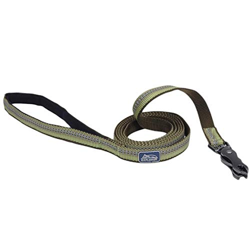 Coastal Pet Products K9 Explorer Reflective Dog Leash with Scissor Snap, 5/8' Wide X 6' Long, Fern, (1-Count)​