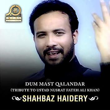 Dum Mast Qalandar - Single