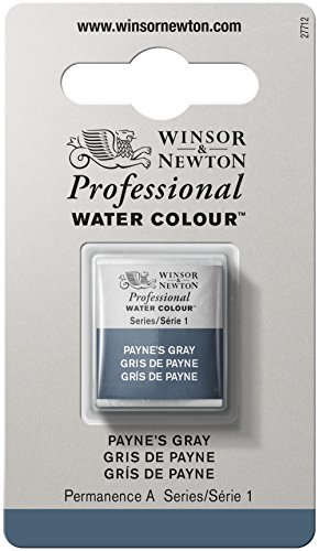 Winsor & Newton Professional Water Colour Paint, Half Pan, Payne's Gray
