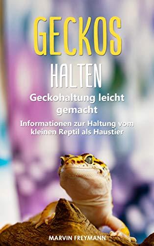 Geckos halten: Geckohaltung leicht gemacht - Grundlegende Informationen zur Haltung vom kleinen Reptil als Haustier