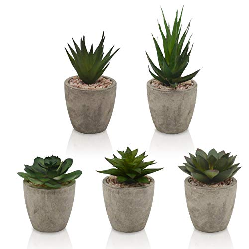 TOREDOO Kunstpflanzen Set mit 5 künstlichen Sukkulenten Deko Pflanzen für Bad Küche Wohnzimmer by Hyggelig Home - 5er Set