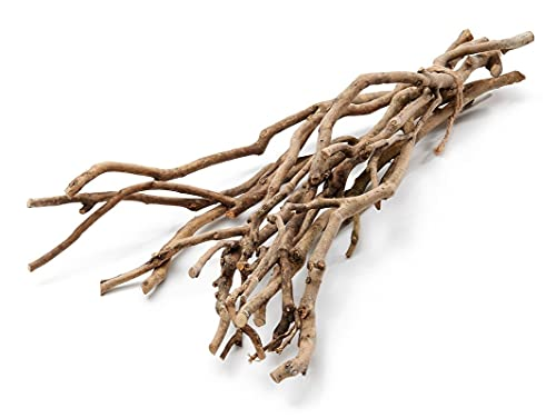 NaDeco Tee Busch Zweige Natur ca. 50cm Tea Bush Tea Bush Dekozweig Dekoast Dekobaum Deko Zweige Deko Äste