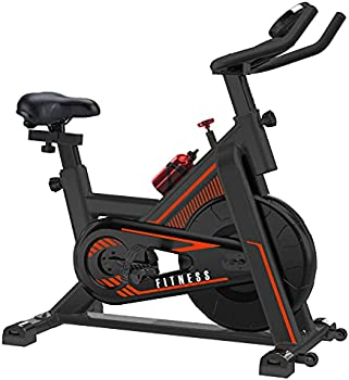 Viewall Indoor Cycling Bike with LCD Monitor, Belt Drive, iPad Holder