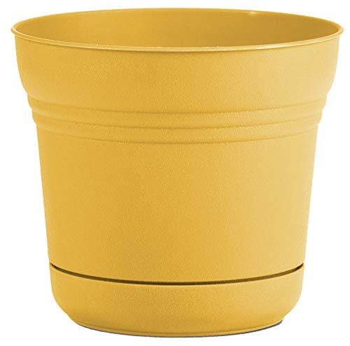 Bloem SP1423 Saturn Planter w/Saucer 14' Earthy Yellow