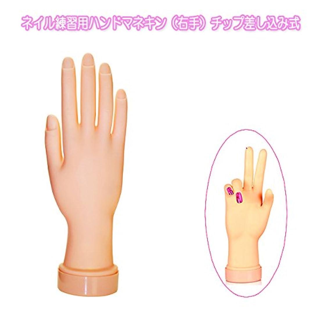 ベルベットプロペラロイヤリティネイル練習用ハンドマネキン(右手)チップ差し込み式