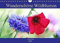 Wunderschoene Wildblumen (Wandkalender 2022 DIN A4 quer): Bluehendes fuer einen natuerlichen Garten, als Nahrungsquelle fuer Bienen und Co. (Monatskalender, 14 Seiten )