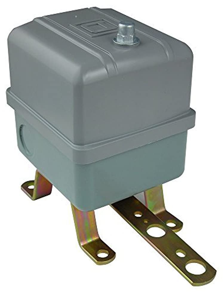 不調和手当ガロンSquare D 9036 Heavy-Duty Open Tank Float Switch, NEMA 1, Contacts Close on Rise [並行輸入品]