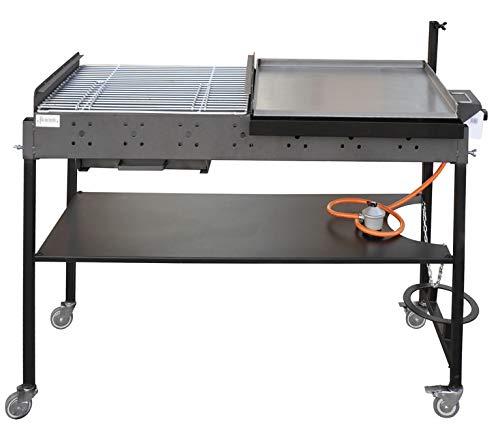 Barbacoa de Gas y Carbón Portátil con Plancha de Acero Inoxidable y...