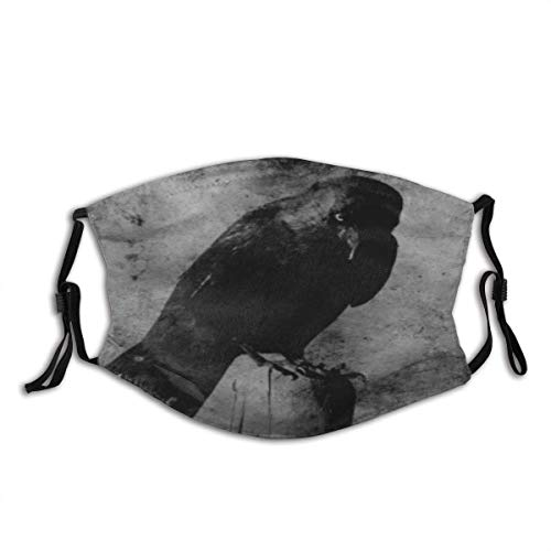 Grunge Vintage Darkness Crow Bird Unisex Dustproof Mouth Mask with fliters