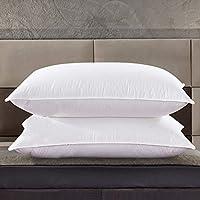2-Pack Zingsleep Goose Down Pillow