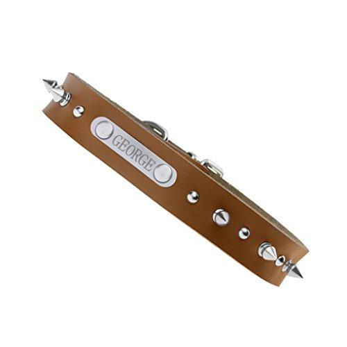Niete Hundehalsband mit Name Gravur Personalisierte Hunde Haustier Echtes Leder Halsband Haustiername und Telefonnummer Marke Braun