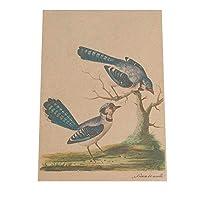 FASHION POSTER(ファッションポスター) A4(約21cm×30cm) ポスター(ヴィンテージ) ポスターのみ トリ 鳥 絵画 アート 画 絵 自然 和風 バード 北欧 ナ(fg-poster-504-a4A4vint)