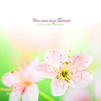 You are my flower
