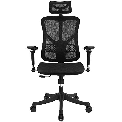 Argomax Ergonomic Mesh Chair