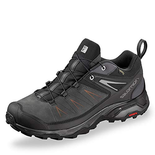 SALOMON Shoes X Ultra 3 LTR GTX, Chaussures de Randonnée Basses Homme, Phantom/Magnet/Quiet Shade, 42 EU