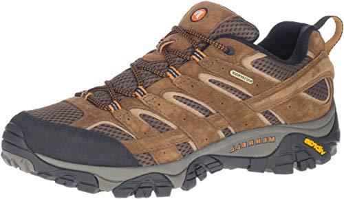 Merrell Men's Moab 2 Waterproof Hiking Shoe, Earth, 8 M US