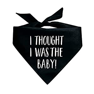 Tees & Tails I Thought I was The Baby Pregnancy Announcement Triangle Dog Bandana (Assorted Colors)