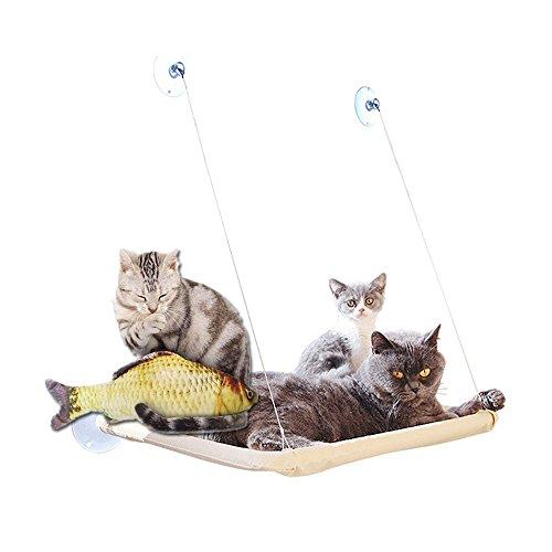 Homesupplier Hamaca para Gatos Gato Ventana Pared balda Cama