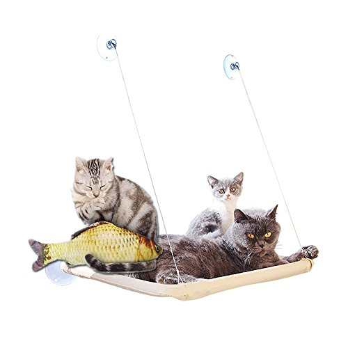 hamaca para gatos gato ventana pared balda cama cat bed colchón de...