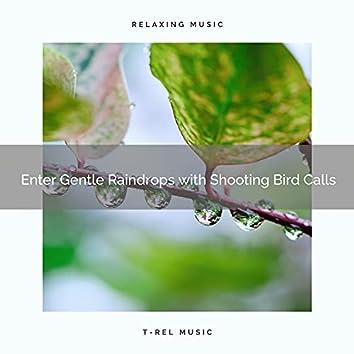 ! ! ! ! ! ! ! ! ! ! Enter Gentle Raindrops with Shooting Bird Calls