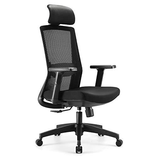 SIHOO Ergonomics Bürostuhl, Mesh Stuhl, Schreibtischstuhl, mit Verstellbarer Hubarmlehne und Lordosenstütze, Stuhl mit hoher Rückenlehne (Schwarz)