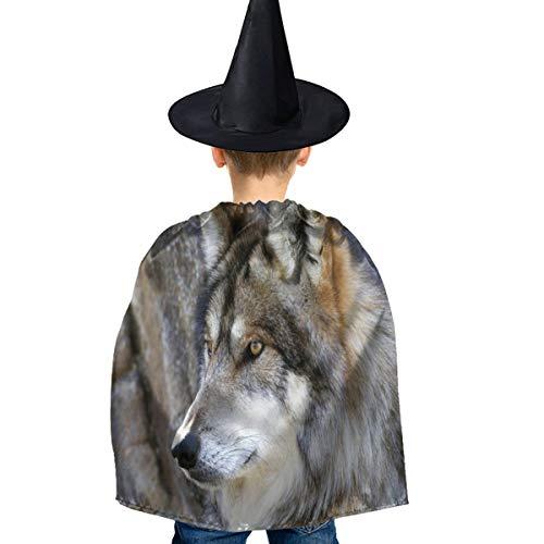 Amoyuan Unisex Kids Kerstmis Halloween Heks Mantel Met Hoed Wilde Wolf Gezicht Wizard Cape Fancy Jurk