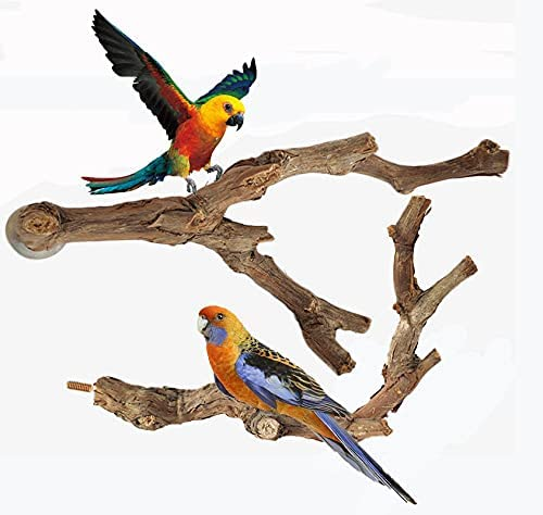 OSWINMART 2Pcs Bird Perches Natural Raw No Direct stock discount New arrival Paint or Branch Grape