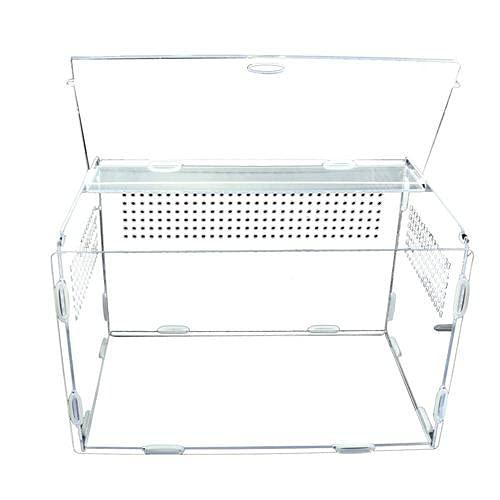 rebirthesame Reptile Clear Terrarium Habitat Acryl-Vollansichts-Fütterungsbox Tragbare Reptilien-Zuchtbox Für Insekten-Spinnen-Eidechsen-Frosch-Cricket-Schildkröten-Schnecken-Raupen - S, L, XL