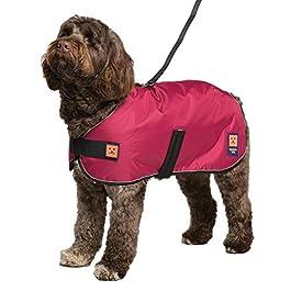 Ginger Ted Shower Harness Waterproof Dog Coat