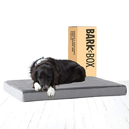 BarkBox GelMemory Foam Dog Bed