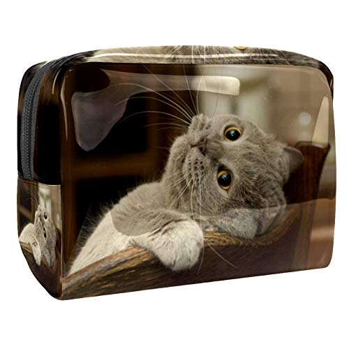 Maquillage Cosmetic Case Multifunction Travel Toiletry Storage Bag Organizer for Women - Grey Cat Chair
