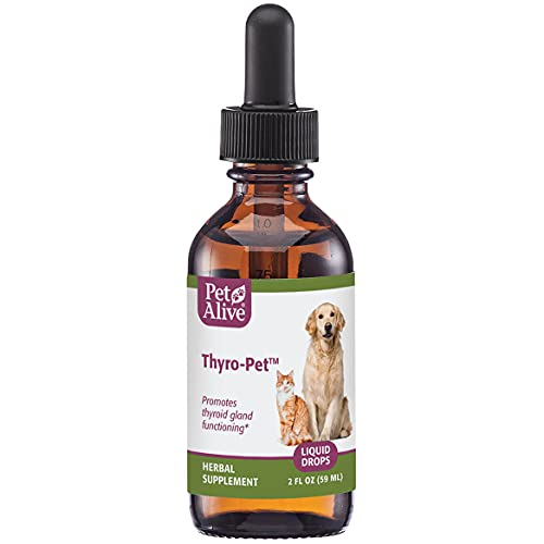 Top 10 best selling list for supplements for hyperthyroidism cats