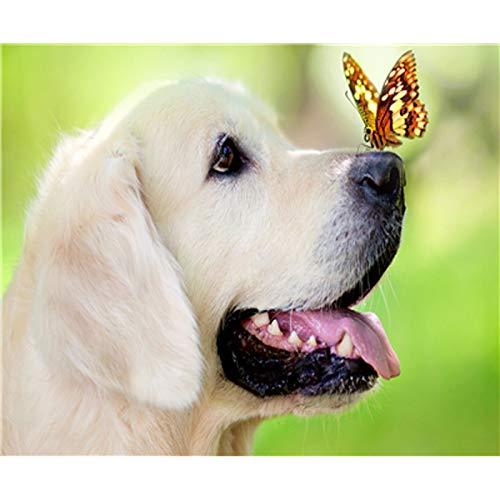 baodanla Frameloze olieverfschilderij Full Round Lovely Dogs Ng Kit Sticker Home D