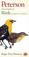 Peterson First Guide to Birds of North America by Roger Tory Peterson(1998-02-20)