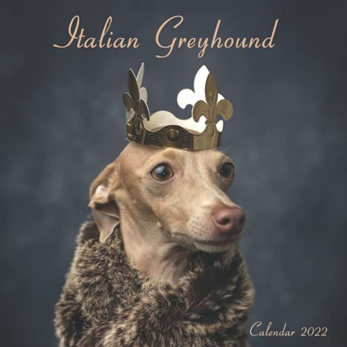 Italian Greyhound: Wall And Office Organizer 2022, Mini Calendar | UK and US Official Holidays | A Must Have For Italian Greyhound Lovers.