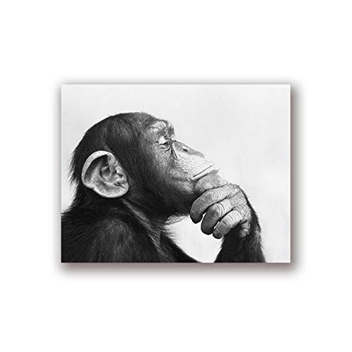 NO BRAND Cuadro en Lienzo Mono Foto en Blanco y Negro Impresión de póster Inicio Arte de la Pared Animales nórdicos Imagen para la decoración de la Sala de Estar 60x80cm (23.6