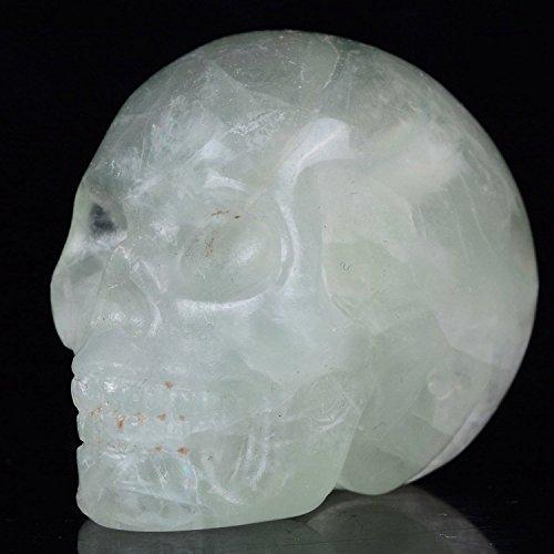 Mineralbiz 1.3'-1.5' Length Natural Green Fluorite Carved Crystal Gemstone Human Skull Head Carving Sculpture