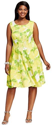 Sandra Darren Women's Plus Size Extended Shoulder Multi Colored Fit and Flare Scuba Dress, Lemon Lime