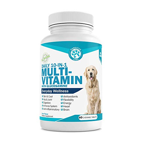 PAWSITIVE LABS 10 in 1 Dog Multivitamin with Glucosamine  D3  MSM to Help Reduce Joint Inflammation and Increase Immune System  Mobility and Flexibility – All-in-One Daily Dog Vitamin and Supplement