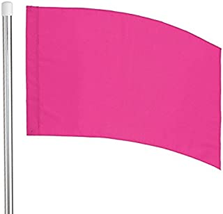Director's Showcase 6' Flag Pole and Color Guard Flag Package (Pink)
