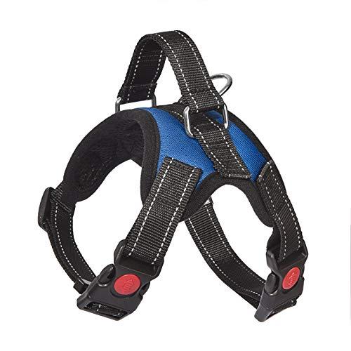 Hundegeschirr, atmungsaktiv, verstellbar, für kleine, mittelgroße und große Hunde mit stabiler Leine (S, blau)