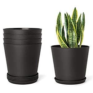 Mkono 6.5″ Plastic Planters with Trays, Indoor Set of 5 Flower Plant Pots Modern Decorative Gardening Pot with Drainage Hole for All House Plants, Herbs, Foliage Plant, and Seed Nursery, Black