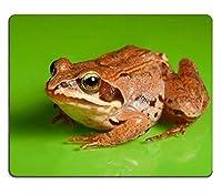 緑の背景PM011672のカエルの天然ゴムゲーミングマウスパッド快適で滑りにくいマウスマットのクローズアップ
